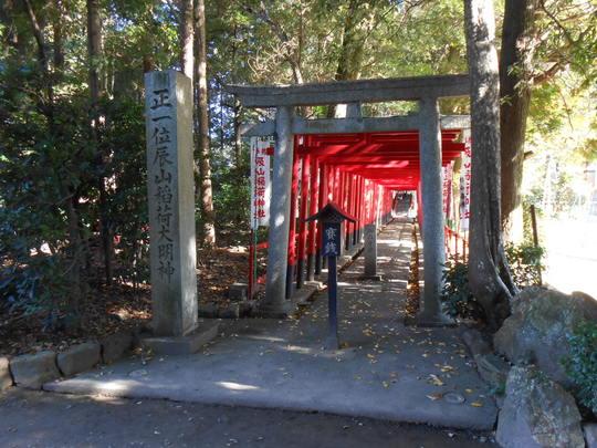 辰山稲荷神社 鳥居風景.JPG